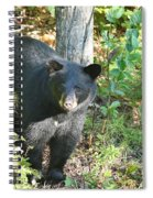 Our Little Shadow II Spiral Notebook