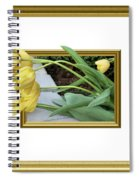 Out Of Frame Yellow Tulips Spiral Notebook