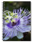 Out Of This World  Spiral Notebook