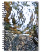 Out Of Water Spiral Notebook