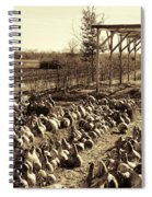 Out Of Your Gourd Spiral Notebook