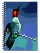 Out On A Limb - Blue Spiral Notebook
