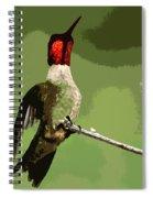 Out On A Limb - Green Spiral Notebook