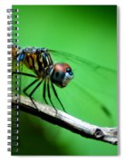 Out On A Limb Spiral Notebook
