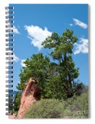 Outcropping Spiral Notebook