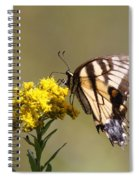 Outstanding Spiral Notebook