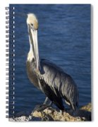 Over The Shoulder Pose Spiral Notebook