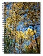 Overhead Glory Spiral Notebook