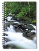 Owengarriff River, Killarney National Spiral Notebook