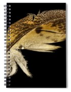 Owl Feather With Water Spiral Notebook