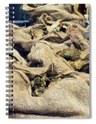 Oysters Galore Spiral Notebook