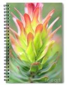 Pagoda Protea Spiral Notebook