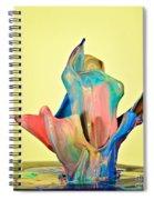 Paint Art Spiral Notebook