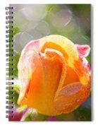 Paint Daub Yellow Rose Spiral Notebook