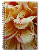 Paint Spattered Petals Spiral Notebook