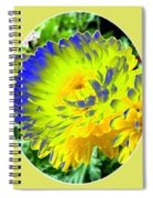 Painted Chrysanthemums Spiral Notebook