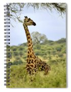 Painted Giraffe Spiral Notebook