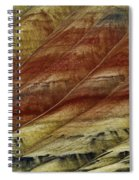 Painted Hills Lines Spiral Notebook