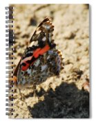 Painted Lady 8591 3341 Spiral Notebook