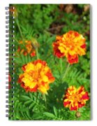 Painted Lady Butterfly In The Marigolds  Spiral Notebook