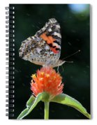 Painted Lady In A Shower Spiral Notebook