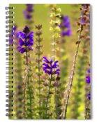 Painted Purple Sage Salvia Spiral Notebook