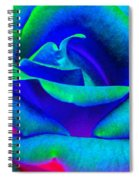 Painted Rose 2 Spiral Notebook