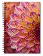 Painted Stacked Dahlias Spiral Notebook