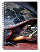 Painted Turtle Michigan Spiral Notebook