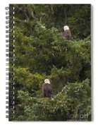 Pair Of Bald Eagles Spiral Notebook