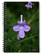 Pale Purple Spiral Notebook