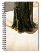 Pale Spiral Notebook