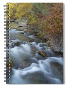 Palisades Autumn Spiral Notebook