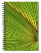 Palm Leaf II Spiral Notebook
