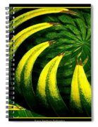 Palm Tree Abstract Spiral Notebook