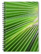 Palm Tree Frond Spiral Notebook