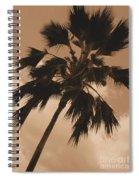 Palm Tree Leeward Oahu Spiral Notebook