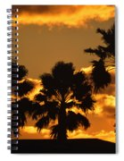 Palm Trees In Sunrise Spiral Notebook