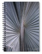 Palmetto Fan Spiral Notebook