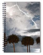 Palms And Lightning 3 Spiral Notebook
