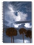 Palms And Lightning 4 Spiral Notebook