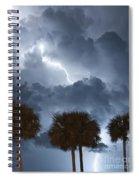 Palms And Lightning 5 Spiral Notebook
