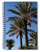 Palms9895b Spiral Notebook