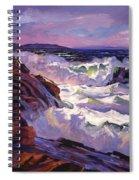 Palos Verdes Beach Spiral Notebook
