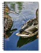 Pals Spiral Notebook