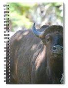 Pam The Bull Spiral Notebook