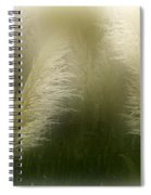 Pampas Dream Spiral Notebook