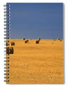 Panoramic Of A Straw Field, Near Val Spiral Notebook