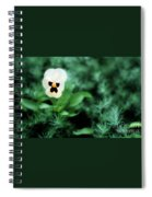 Pansy Face Spiral Notebook