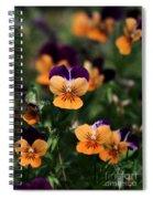 Pansy Garden Spiral Notebook